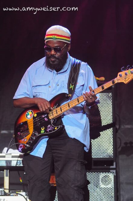 The Wailers at RoverFest 2013 © Amy Weiser, Photographer
