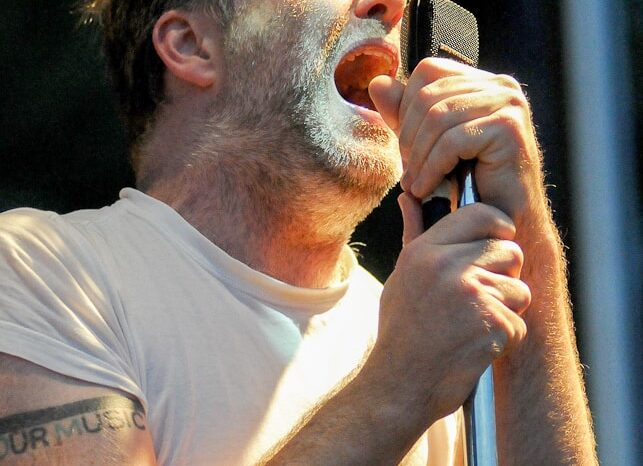 LCD Soundsystem Live in Concert at Pitchfork Music Festival 2010 © Amy Weiser, Photographer